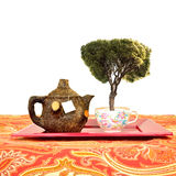Rustic teapot and cup isolated, healthy concept Royalty Free Stock Photo