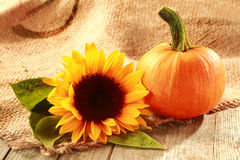 Rustic Thanksgiving background with copyspace Stock Photography