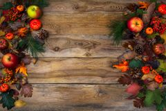 Rustic Thanksgiving decoration with pumpkins and cones Stock Photo