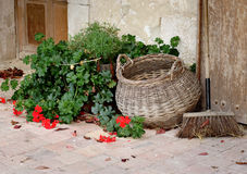 Rustic Tiled Floor. Geraniums, wicker basket and a broom on a tiled entrance to a Rustic House in France Stock Images