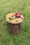 Rustic tray full of different fruits lays on top of a tree log. A rustic tray full of different fruits lays on top of a tree log stock images