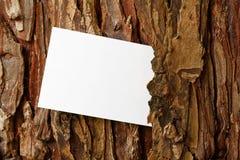 Rustic tree bark border Stock Photography
