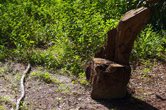 Rustic tree stump seat Stock Images