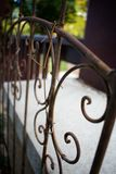 Rustic Trellis with Old Vines Growing On It royalty free stock image