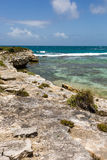 Rustic Tropical Beach Coastline Antigua Stock Photo