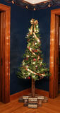 Rustic Victorian Alpine Christmas Tree in Corner Royalty Free Stock Photo