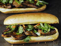 Rustic vietnamese bahn mi pork sandwich Royalty Free Stock Images