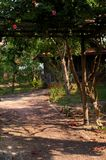 Rustic village garden. Rustic Cambodian village garden showing ppath winding to house Royalty Free Stock Photos