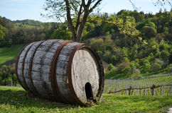 Rustic vine barrel Royalty Free Stock Photo