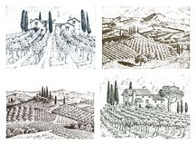 Rustic vineyard. rural landscape with houses. solar tuscany background. fields and cypress trees. harvesting and. Haystacks. engraved hand drawn in old sketch Royalty Free Stock Images