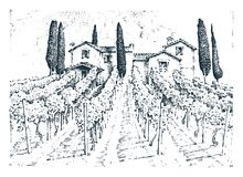 Rustic vineyard. rural landscape with houses. solar tuscany background. fields and cypress trees. harvesting and. Haystacks. engraved hand drawn  old sketch and Stock Photo