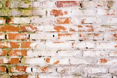 Rustic vintage bakcground of red brick wall. Cladding with cement seams royalty free stock image