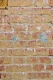 Rustic vintage bakcground of red brick wall. Cladding with cement seams royalty free stock photography