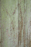 Rustic vintage green painted barn wood wall Royalty Free Stock Photography