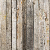 Rustic weathered barn wood background with knots and nail holes. With nature background royalty free stock image