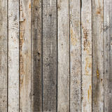 Rustic weathered barn wood background with knots and nail holes. With nature light Stock Image