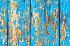 Rustic weathered planks with blue paint peeling off Royalty Free Stock Photos
