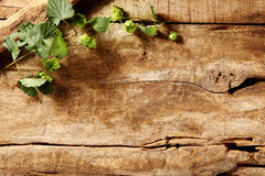 Rustic weathered wood background with greenery Royalty Free Stock Photos
