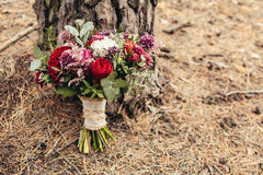 Rustic wedding bouquet with red rose nearly pine tree with cope Stock Photography