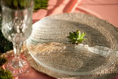 Rustic wedding table setting with succulents, moss and wood stock images