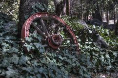 Rustic wheel Royalty Free Stock Images