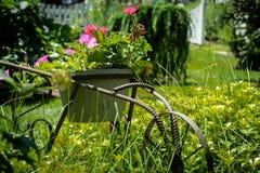 Rustic wheelbarrow flowerpot amongst green grasses. Beautiful garden sculpture surrounded by stock image