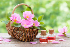 Rustic wicker basket with pink rose hip flowers and bottles Royalty Free Stock Images