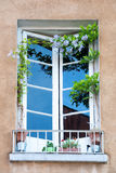 Rustic window with flowers Stock Photography