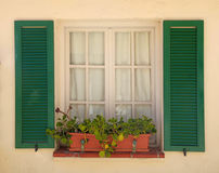 Rustic window with old green shutters and flower pot stock photos