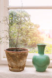 Rustic window sill. Image of a rustic window sill with plant pot and vase Stock Photo