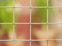 RUSTIC WIRE FENCE Stock Photos