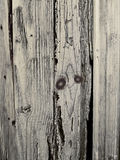 Rustic wood background Stock Image
