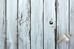 Rustic Wood Background. With seashell Stock Photos