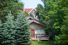 Rustic wood cottage among pine trees in Ontario forrest. Small rustic wood cottage among pine trees in Ontario forrest during the summer Stock Images
