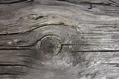 Rustic wood knot Royalty Free Stock Image