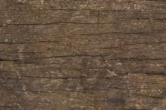 Rustic wood abstract cracked surface background. Rustic wood patterns woody texture old textured background abstract surface cracked royalty free stock photos