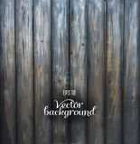Rustic Wood plank gray vintage background Royalty Free Stock Image