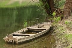 Rustic Wooden Boat under the Tree stock photo