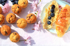 Rustic wooden breakfast background with bluberries, fresh muffins and blooming cherry flowers Stock Photo