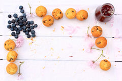 Rustic wooden breakfast background with bluberries, fresh muffins and copy space Royalty Free Stock Photos