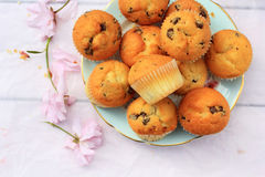 Rustic, wooden breakfast background with fresh muffins and blooming cherry flowers Royalty Free Stock Images