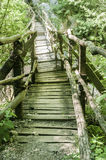 Rustic wooden bridge Royalty Free Stock Photos