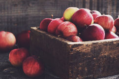 Rustic wooden crate with ripe apples with empty space wooden backdrop Stock Image