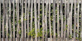 Rustic Wooden Fence. Along a Dense Shrub (Lengthwise Seamless Background royalty free stock photography