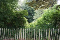 Rustic wooden fence barrier from the forest beyond Royalty Free Stock Photography