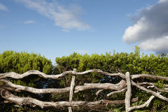 Rustic wooden fence with green vegetation blue sky in Azores Stock Photos