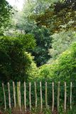 Rustic wooden fence prevents access to the forest beyond Royalty Free Stock Photos