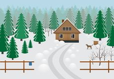 Rustic wooden house in a forest area in winter . Royalty Free Stock Image
