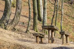 Rustic wooden picnic table and seats Royalty Free Stock Photography
