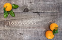 Rustic wooden plank table with fresh picked oranges with stem an. D leaves in corners. Background with space for text. Top view Royalty Free Stock Photo